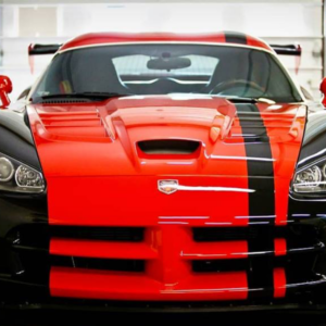 Red and Black Viper